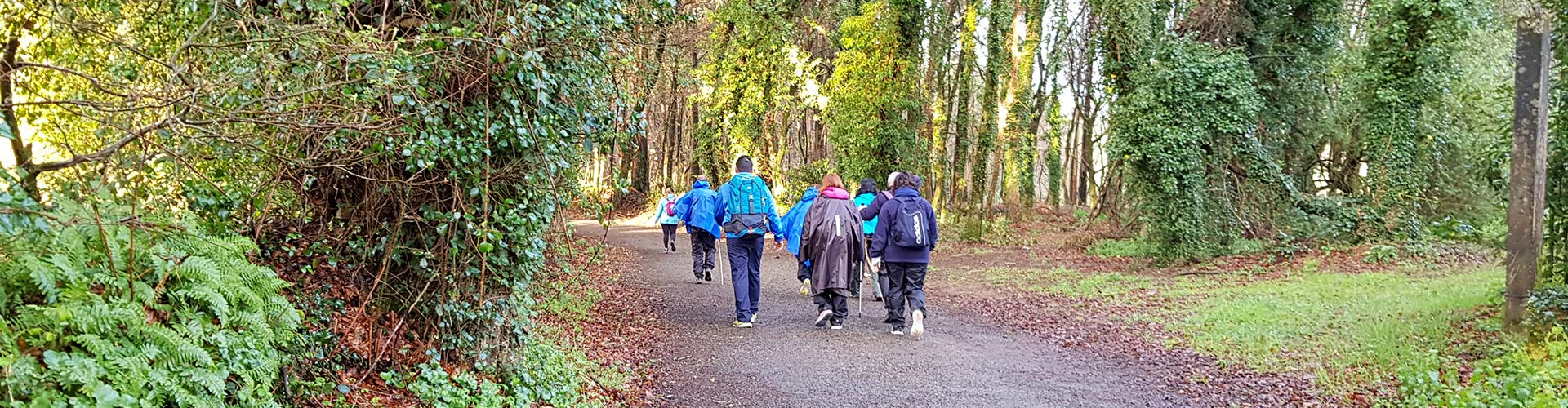 pilgrims walking on the camino trail
