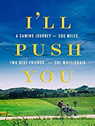 i'll push you movie cover