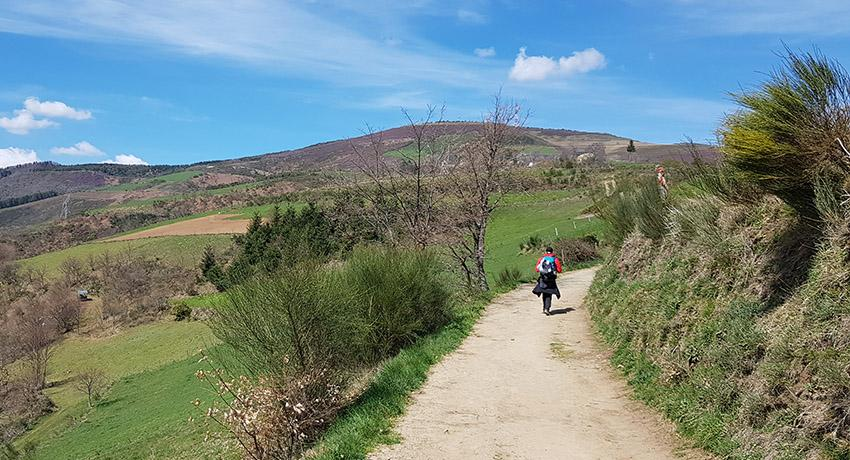 pilgrim walking on a camino trail