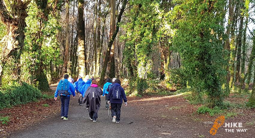 Walking Pilgrims on el camino trail