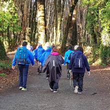 pilgrims walking on trail on el camino de Santiago